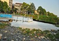 Đổi màu kênh Nhiêu Lộc - Thị Nghè