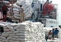FAO: Sản lượng gạo trên toàn cầu sẽ đạt kỷ lục