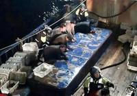 Ngư dân Trung Quốc tấn công ngư giám Hàn Quốc