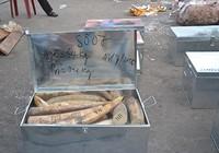 Khởi tố vụ buôn lậu hơn 2,2 tấn ngà voi qua đường biển