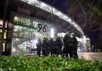Wenger chỉ trích quyết định hủy trận Đức - Hà Lan vì sợ khủng bố