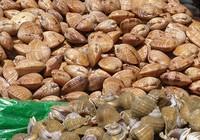 Chuyên gia 'bật mí' cách chế biến hải sản