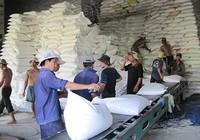Xuất khẩu gạo bứt phá