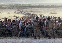 Syria trước giờ ngừng bắn