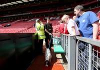 Man. Utd gặp bất lợi vì lịch đá lại với Bournemouth