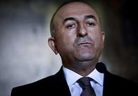 Đến lượt các đại sứ và nhà báo ở Thổ Nhĩ Kỳ bị thanh trừng