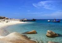 Khu bảo tồn biển Hòn Cau kêu cứu vì ô nhiễm
