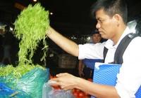 Truy tìm người ngâm rau muống bào với hóa chất độc
