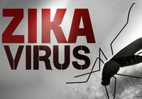 Phát hiện ca bệnh đầu nhỏ nghi do virus Zika ở Đắk Lắk