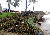 Bãi biển Nha Trang ngập rác trong những ngày mưa