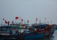 Hàng trăm tàu đánh cá bắt đầu mùa biển mới ra Hoàng Sa