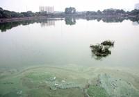 Hồ nước bốc mùi hôi thối, người dân 'cố thủ' trong nhà
