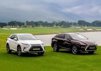 Toyota triệu hồi xe Lexus RX 350 và RX 200T