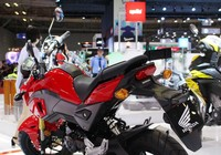 Ấn tượng mẫu xe 'khỉ' Honda MSX 125cc tay côn mới