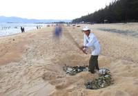 Cụ ông 62 tuổi tự nguyện nhặt rác làm sạch bãi biển