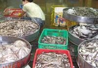 Các dạng ngộ độc thực phẩm thường gặp