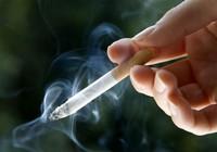 Phát hiện mới: khói thuốc lá 'sấy khô' vùng cấm
