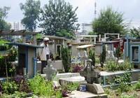 Dự án di dời nghĩa trang Bình Hưng Hòa vẫn đang tìm nhà đầu tư