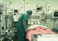 Bệnh nhân được thay khối tim phổi từ người chết não hiến tặng đã tử vong