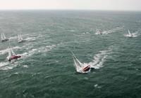 Đà Nẵng là điểm dừng của cuộc đua thuyền buồm trên biển dài nhất thế giới