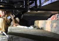 Bắt giữ gỗ lậu được che giấu tinh vi trên xe khách