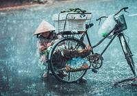 Con gửi mẹ một đêm mưa