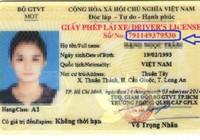 Cách kiểm tra giấy phép lái xe thật hay giả