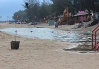 Bình Thuận: DN cào cát dọn sạch bãi biển cần biểu dương