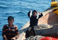 Vụ nhận chìm: 300 cựu binh Tuy Phong gởi tâm thư