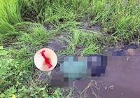 1 phụ nữ chết bất thường dưới cầu Phú Sung