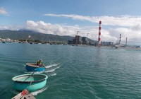 'Nguyên nhân hải sản chết tại Vĩnh Tân do mưa lớn'