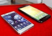Infographic: So sánh điện thoại chính hãng và xách tay