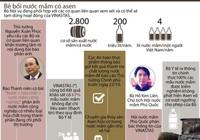 Infographic: Toàn cảnh vụ bê bối nước mắm có chứa asen