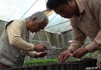 Giúp người Việt hiểu về thực phẩm sạch