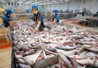 Thượng viện Mỹ bỏ giám sát cá tra VN, chờ ông Obama ký thành luật