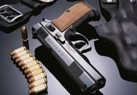 Bắt giữ súng và 2.000 viên đạn giấu trong hàng nhập khẩu