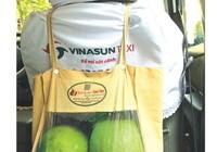 800 tài xế taxi Vinasun bán bưởi do 'sếp' trồng