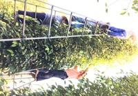Ấn Độ đồng ý gỡ bỏ lệnh tạm ngưng nhập nông sản Việt