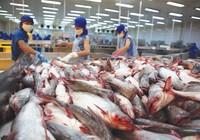 Tạm dừng xuất khẩu cá tra sang Mỹ bị cảnh báo