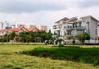 TP.HCM phê bình hàng loạt cán bộ liên quan đến đất đai