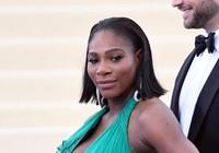 Serena Williams mang bầu cũng không yên