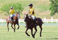 Hoàng tử Brunei đánh bại Bộ trưởng Malaysia ở SEA Games