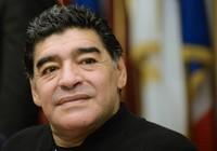 Maradona là kẻ cơ hội, Ý sa thải HLV Ventura