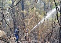 Chùm ảnh: Gian nan cứu hỏa giữa rừng, gần đỉnh đèo Hải Vân