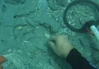 Phát hiện kho báu trong xác tàu Tây Ban Nha 300 tuổi