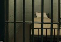 10 năm 14 lần mang thai để … không vào tù