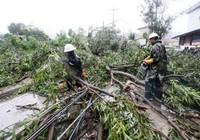 Phlippines đón siêu bão Goni, hàng trăm người di tán