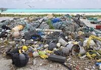 Đến năm 2050, biển sẽ chứa nhiều rác hơn cá