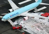 Máy bay Hàn Quốc bốc cháy động cơ tại Nhật Bản