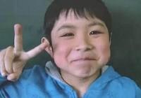 Cậu bé Nhật mất tích 6 ngày trong rừng sống sót kỳ diệu